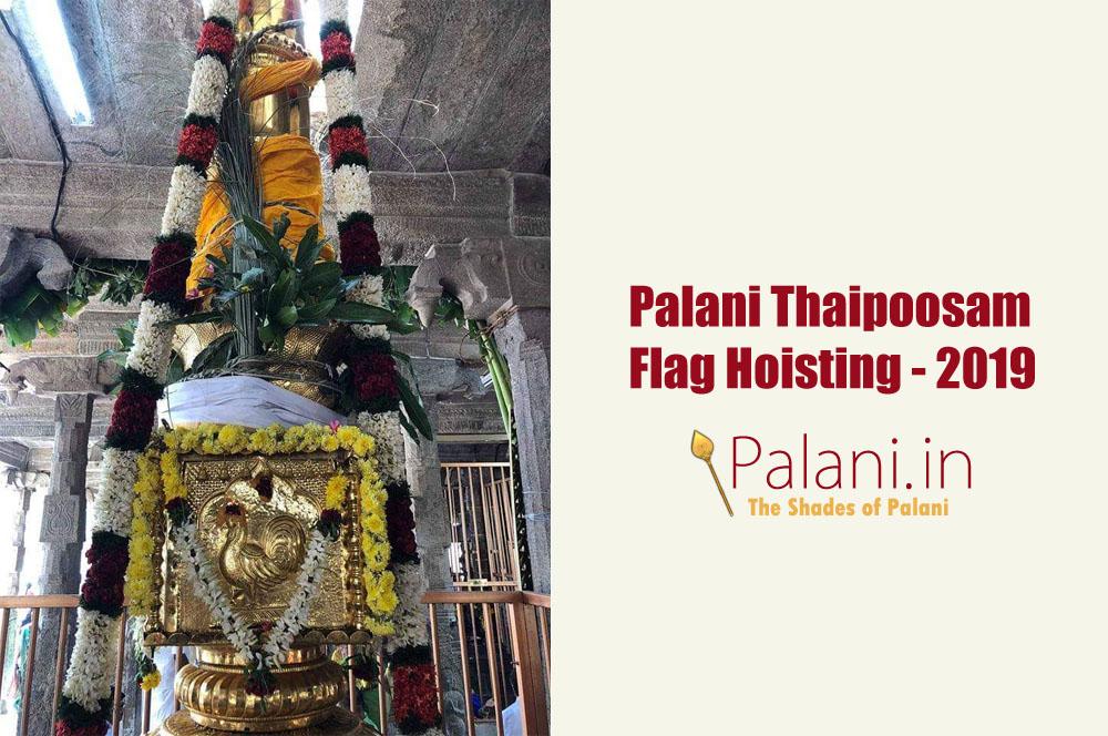 palani thai pusam 2019